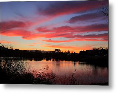 Almaden Lake Metal Print by Ru Tover