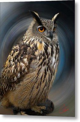 Almeria Wise Owl Living In Spain  Metal Print by Colette V Hera  Guggenheim