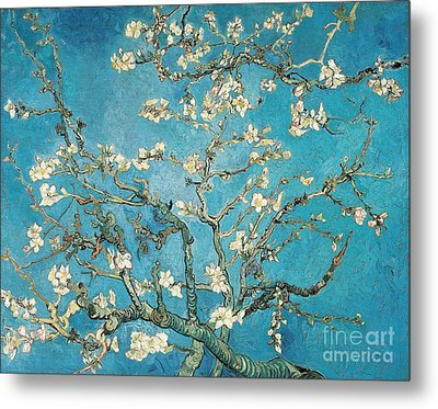 Almond Branches In Bloom Metal Print by Vincent van Gogh