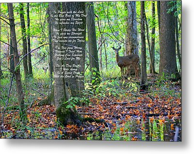 Alone With God Metal Print by Lorna Rogers Photography