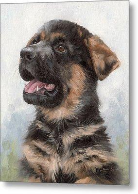 Alsatian Puppy Painting Metal Print by Rachel Stribbling