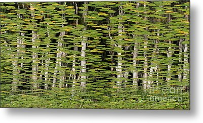 Altered Reflections Metal Print by Howard Ferrier