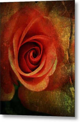 Always Be My Dream Metal Print by Shirley Sirois