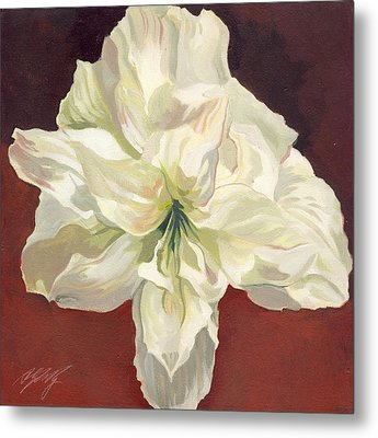 Amaryllis With Red Metal Print by Alfred Ng