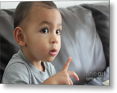 Amazement Metal Print by Lotus
