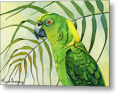 Amazon Metal Print by Lyse Anthony