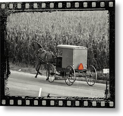 Amish Buggy Monochrome Metal Print by Terry Weaver