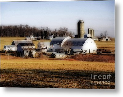 Amish Laundry Day Metal Print by Skip Willits