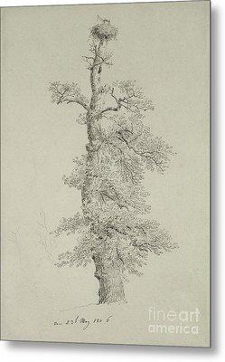 Ancient Oak Tree With A Storks Nest Metal Print by Caspar David Friedrich