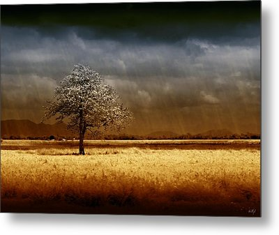 And The Rains Came Metal Print by Holly Kempe