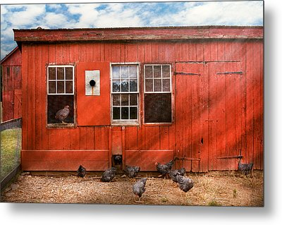 Animal - Bird - Bird Watching Metal Print by Mike Savad