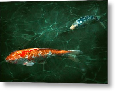Animal - Fish - Koi - Another Fish Story Metal Print by Mike Savad
