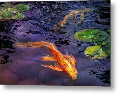 Animal - Fish - There's Something About Koi  Metal Print by Mike Savad