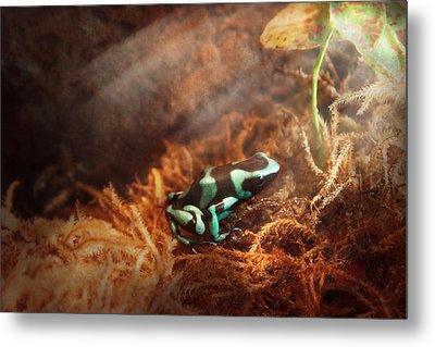 Animal - Frog - Lick The Green Frog Metal Print by Mike Savad
