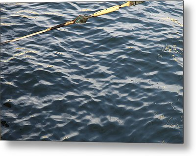 Annapolis Md - 121248 Metal Print by DC Photographer