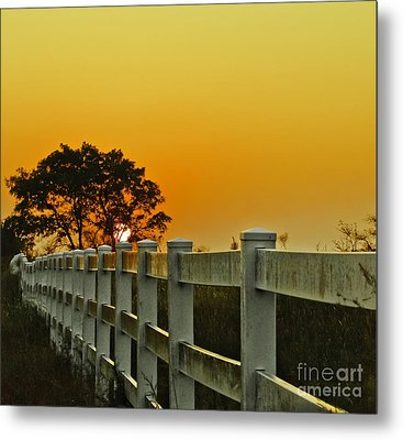 Another Tequila Sunrise Metal Print by Robert Frederick