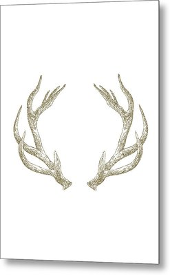 Antlers Metal Print by Randoms Print