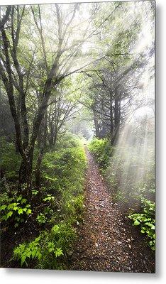 Appalachian Trail Metal Print by Debra and Dave Vanderlaan