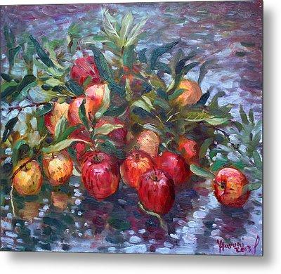 Apple Harvest At Violas Garden Metal Print by Ylli Haruni