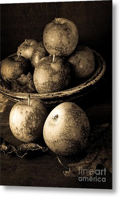 Apple Still Life Black And White Metal Print by Edward Fielding