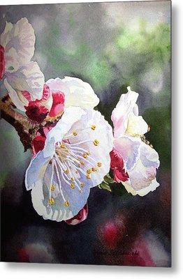 Apricot Flowers Metal Print by Irina Sztukowski