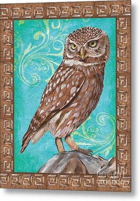 Aqua Barn Owl Metal Print by Debbie DeWitt
