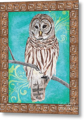 Aqua Barred Owl Metal Print by Debbie DeWitt