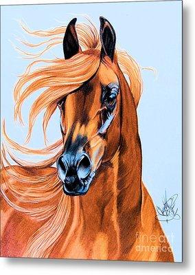 Arabian Portrait In Color Pencil Metal Print by Cheryl Poland
