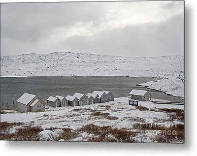 Arctic Winter Metal Print by Gry Thunes