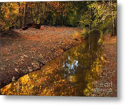 Arizona Autumn Reflections Metal Print by Mike  Dawson
