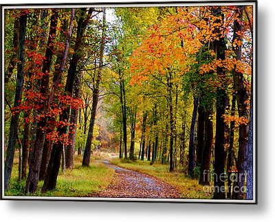 Around The Bend Metal Print by Patti Whitten
