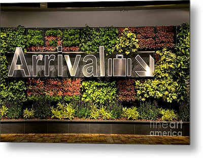 Arrival Sign Arrow And Flowers At Singapore Changi Airport Metal Print by Imran Ahmed