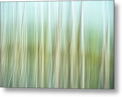 Artistic Abstract Of Trees Metal Print by Rona Schwarz