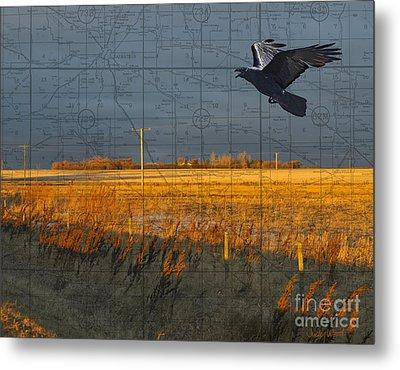 As The Crow Flies-fall Fields Metal Print by Judy Wood