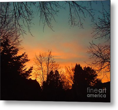 As The Sun Goes Down Metal Print by Ann Johndro-Collins