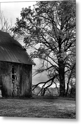 At The Barn In Bw Metal Print by Julie Dant