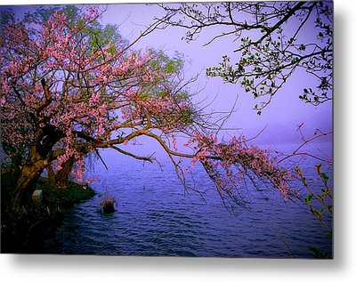At The Edge Metal Print by William Walker