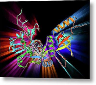 Atp-dependent Dna Ligase Molecule Metal Print by Laguna Design
