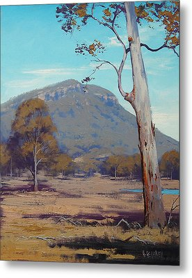 Australian Summer Landscape Metal Print by Graham Gercken