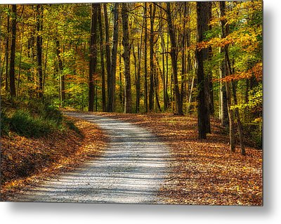 Autumn Beauty Metal Print by Dale Kincaid
