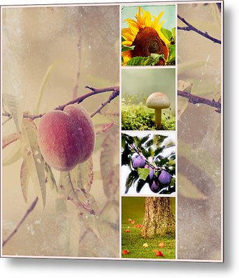 Autumn Collage Metal Print by Heike Hultsch