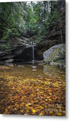Autumn Falls Metal Print by James Dean