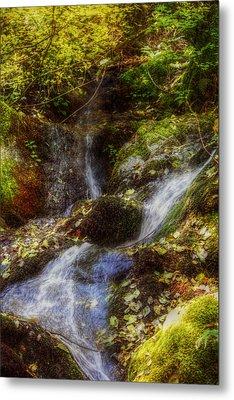 Autumn Falls Metal Print by Melanie Lankford Photography