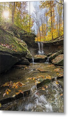 Autumn Flows Metal Print by James Dean