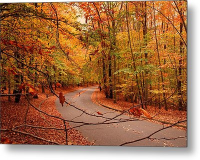 Autumn In Holmdel Park Metal Print by Angie Tirado