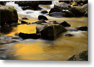 Autumn In The Water Metal Print by Dan Sproul