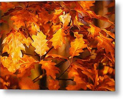 Autumn Leaves Oil Metal Print by Steve Harrington