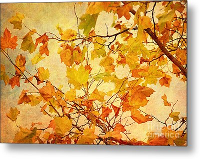 Autumn Leaves With Texture Effect Metal Print by Natalie Kinnear