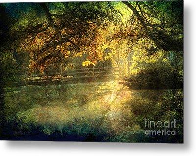 Autumn Light Metal Print by Ellen Cotton