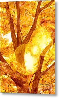 Autumn Light Metal Print by Hailey E Herrera
